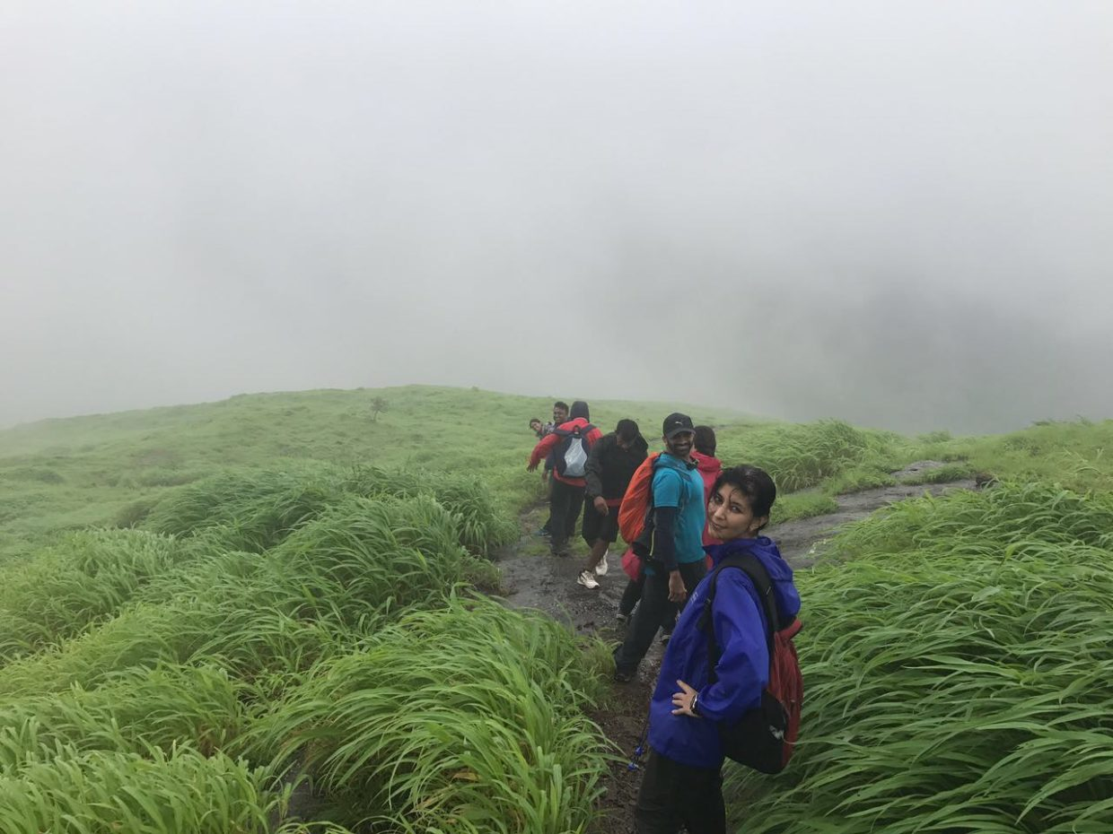 what trekking reminded about investing